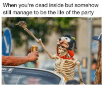 Life, Party, and MeIRL: When you're dead inside but somehow  still manage to be the life of the party  official. agne meirl