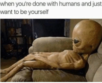 Memes, 🤖, and Done: when you're done with humans and just  want to be yourself leave me be humans
