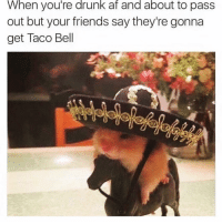 Af, Drunk, and Friends: When  you're  drunk  af  and  about  to  pas:s  out but your friends say they're gonna  get Taco Bell Vamonos @crazybitchprobs_ 😆