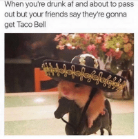 Af, Drunk, and Friends: When you're drunk af and about to pass  out but your friends say they're gonna  get Taco Bell Olay betches! ( @crazybitchprobs_ )