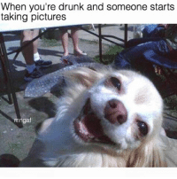 Get my good side! Jk don't have one of those. (@menotgivingafuck): When you're drunk and someone starts  taking pictures  mngaf Get my good side! Jk don't have one of those. (@menotgivingafuck)