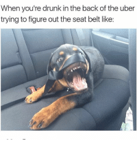 Its like all my uber drivers drive a space ship 🚀 @girlsthinkimfunny 😂👌 follow @girlsthinkimfunny: When you're drunk in the back of the uber  trying to figure out the seat belt like Its like all my uber drivers drive a space ship 🚀 @girlsthinkimfunny 😂👌 follow @girlsthinkimfunny