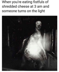 """Dank, Meme, and Cheese: When you're eating fistfuls of  shredded cheese at 3 am and  someone turns on the light <p>Uhhhh via /r/dank_meme <a href=""""https://ift.tt/2H7zEaI"""">https://ift.tt/2H7zEaI</a></p>"""