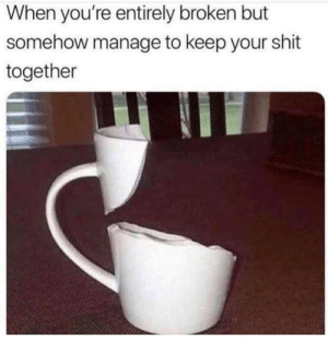 Shit, Irl, and Me IRL: When you're entirely broken but  somehow manage to keep your shit  together me_irl