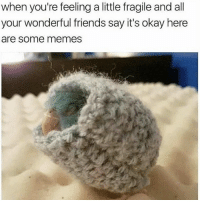 Friends, Memes, and Okay: when you're feeling a little fragile and all  your wonderful friends say it's okay here  are some memes heheh