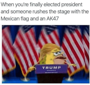 November 2016: When you're finally elected president  and someone rushes the stage with the  Mexican flag and an AK47  TRUMP November 2016