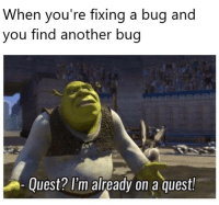 Quest, Another, and Bug: When you're fixing a bug and  you find another bug  Quest? l'm already on a quest! When youre fixing a bug and you find another bug