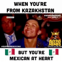 That Time Golovkin Came out to Fight with Some Mexican Music 🤣🙌🏻💯 Meme Collab W- @nomasboxing & @supremeboxing 👈🏼 caneloggg canelo gennadygolovkin boxingmemes teamcanelo teamggg: WHEN YOU'RE  FROM KAZAKHSTAN  #NOMASBOXING  C.  BOXING  #SUPREMEBOXING  NSTAGRAM  BUT YOU'RE  MEXICAN AT HEART That Time Golovkin Came out to Fight with Some Mexican Music 🤣🙌🏻💯 Meme Collab W- @nomasboxing & @supremeboxing 👈🏼 caneloggg canelo gennadygolovkin boxingmemes teamcanelo teamggg