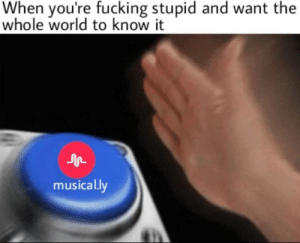 Fucking, Memes, and World: When you're fucking stupid and want the  whole world to know it  musically musical.ly in a nutshell via /r/memes https://ift.tt/2vlAYSA