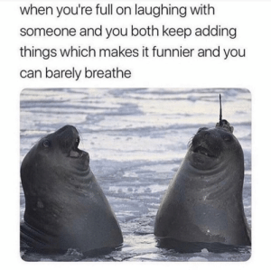 Memes, Can, and Via: when you're full on laughing with  someone and you both keep adding  things which makes it funnier and you  can barely breathe Those were the days via /r/memes https://ift.tt/2PNgx95