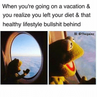 Gym, Lifestyle, and Vacation: When you're going on a vacation &  you realize you left your diet & that  healthy lifestyle bullshit behind  IG: @thegainz Until we mee again ✋🛫 @thegainz