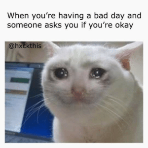 Bad, Bad Day, and Okay: When you're having a bad day and  someone asks you if you're okay  @hxckthis ily