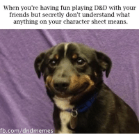 Friends, fb.com, and Mean: When you're having fun playing D&D with your  friends but secretly don't understand what  anything on your character sheet means.  fb.com/dndmemes Please don't ask me what my bonus is. Please don't ask me what my bonus is.  -Law