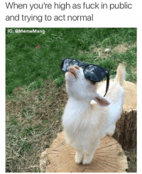 Nothing going on here: When you're high as fuck in public  and trying to act normal  IG: @Meme Mang Nothing going on here