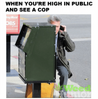 Weed, Marijuana, and Your Highness: WHEN YOU'RE HIGH IN PUBLIC  AND SEE A COP  ing Worl Act cool