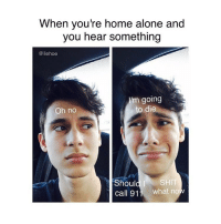 can yall please do me a favour and follow @liehoe bc he makes really funny and relatable posts!!1!!1!1!1!1: When you're home alone and  you hear something  liehoe  Im going  o die  Oh no  Should I  SHIT  Call 91  what no can yall please do me a favour and follow @liehoe bc he makes really funny and relatable posts!!1!!1!1!1!1
