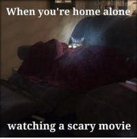 """And then you have to go to the bathroom by that window where you think you saw """"that face."""" 👻👻👻😂😂😂 funnymemes memes catmemes scarymemes scaredmemes movienight: When you're home alone  watching a scary movie And then you have to go to the bathroom by that window where you think you saw """"that face."""" 👻👻👻😂😂😂 funnymemes memes catmemes scarymemes scaredmemes movienight"""