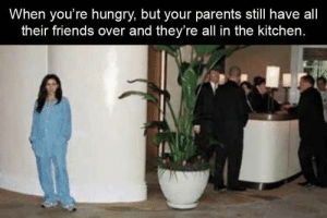 Friends, Funny, and Hungry: When you're hungry, but your parents still have all  their friends over and they're all in the kitchen. Funny Memes Of The Day 24 Pics