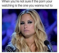 """Dank, Meme, and Http: When  you're  if  the  not sure porn your  watching is the one you wanna nut to <p>Decisions Decisions via /r/dank_meme <a href=""""http://ift.tt/2Bup9gR"""">http://ift.tt/2Bup9gR</a></p>"""