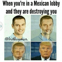 Meme, Memes, and Nintendo: When you're in a Mexican lobby  and they are destroying you For those that listened to KLamars new album, what do you guys think of it? ➖ Check Out The Homies! ➖ @bunnyrages ➖ @itsiihades @glizzly_ ➖ @exitzluck @gamersbanter ➖ @ae.mrwhiterice @bloodransom ➖ @xoprettynpinkxo ➖ CoD CallOfDuty VideoGames Nintendo Xbox XboxOne PlayStation PS4 Meme SacredxPhoenix BO3 BlackOps BlackOps3 GamerMeme IW InfiniteWarfare CoD4 CallOfDuty4 CoDMeme GamingClip Gamer BO3 BlackOps3 VideoGameMeme Gaming Games Game