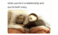 Ass, Crazy, and Funny: when you're in a relationship and  you're both crazy Tag her crazy ass
