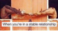 "Memes, Tumblr, and Blog: When you're in a stable relationship <p><a href=""http://memehumor.net/post/166392787121/20-punny-memes-and-comics-that-will-make-you"" class=""tumblr_blog"">memehumor</a>:</p>  <blockquote><p>20+ Punny Memes and Comics That Will Make You Groan</p></blockquote>"