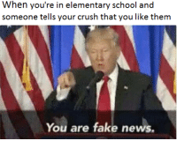 """Crush, Fake, and Memes: When you're in elementary school and  someone tells your crush that you like them  You are fake news. <p>Rs via /r/memes <a href=""""http://ift.tt/2ld2k5f"""">http://ift.tt/2ld2k5f</a></p>"""