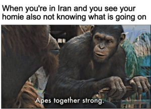 NOT like the simulations: When you're in Iran and you see your  homie also not knowing what is going on  Apes together strong. NOT like the simulations