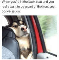 Funny, Back, and Seat: When you're in the back seat and you  really want to be a part of the front seat  conversation. 😫