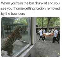 Af, Drunk, and Funny: When you're in the bar drunk af and you  see your homie getting forcibly removed  by the bouncers  @TheTastelessGentlemén 52 Funny Memes That Will Make Your Weekend Great Again