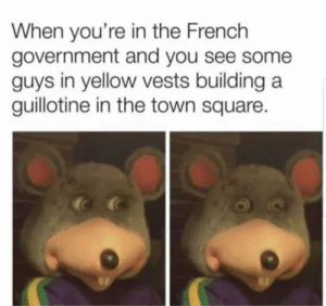 Dank, Memes, and Target: When you're in the French  government and you see some  guys in yellow vests building a  guillotine in the town square. Vive le France! by kolangyetmamaowww MORE MEMES