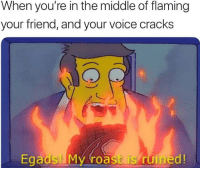 I cried at lunch today: When you're in the middle of flaming  your friend, and your voice cracks  Egads My roast is ruined! I cried at lunch today