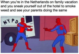 Family, Parents, and Weed: When you're in the Netherlands on family vacation  and you sneak yourself out of the hotel to smoke  weed and see your parents doing the same Happend to me