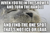 Advice, Shower, and Target: WHEN YOU'RE  IN THE SHOWER  AND TURN THE HANDLE  AND FIND THE ONE SPOT  THATS NOTICE OR LAVA advice-animal:  But of course it's a moving target and never lasts