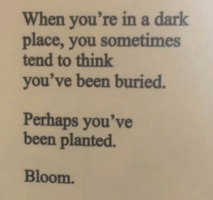 Dark Place: When you're ina dark  place, you sometimes  tend to think  you've been buried.  Perhaps you've  been planted  Bloom.