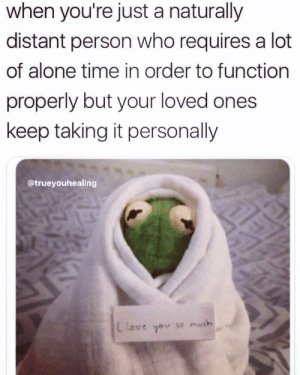 Meirl: when you're just a naturally  distant person who requires a lot  of alone time in order to function  properly but your loved ones  keep taking it personally  @trueyouhealing  L Love  so much Meirl