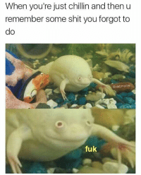 Shit, MeIRL, and Remember: When you're just chillin and then u  remember some shit you forgot to  do  @dabmoms  fuk meirl