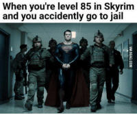 Jail, Memes, and 🤖: When you're level 85 in Skyrim  and you accidently go to jail ~Heisenberg