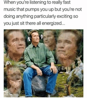 Dank, Driving, and Memes: When you're listening to really fast  music that pumps you up but you're not  doing anything particularly exciting so  you just sit there all energized... Driving hard, but maintaining the speed limit by JLHess FOLLOW 4 MORE MEMES.