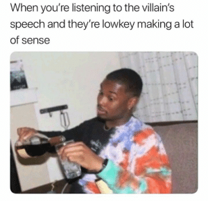 Lowkey, Villains, and Youre: When you're listening to the villain's  speech and they're lowkey maing a lot  of sense