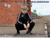 Any Germanic Slavs here?  Elsass Bastard: WHEN YOU'RE LIVING JNKALININGRAD  BUT FOR Y  EAST PRUSS Any Germanic Slavs here?  Elsass Bastard