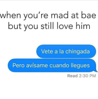 Bae, Memes, and Mad: when you're mad at bae  but you still love him  Vete a la chingada  Pero avisame cuando llegues  Read 2:30 PM Tag bae😂 FOLLOW US➡️ @so.mexican