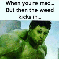 Memes, 🤖, and Kick: When you're mad  But then the weed  kicks in...
