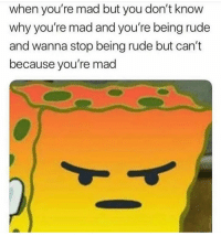 Me everyday 😑: when you're mad but you don't know  why you're mad and you're being rude  and wanna stop being rude but can't  because you're mad Me everyday 😑