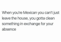 Memes, House, and Mexican: When you're Mexican you can't just  leave the house, you gotta clean  something in exchange for your  absence YES!  Follow us Mexican Problems 🤙