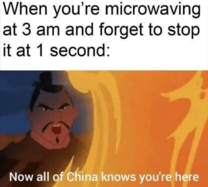Go back to sleep family by playsomezelda MORE MEMES: When you're microwaving  at 3 am and forget to stop  it at 1 second:  Now all of China knows you're here Go back to sleep family by playsomezelda MORE MEMES