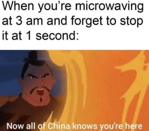 me_irl: When you're microwaving  at 3 am and forget to stop  it at 1 second:  Now all of China knows you're here me_irl