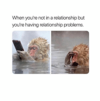 Girl Memes, In a Relationship, and Relationship: When you're not in a relationship but  you're having relationship problems.