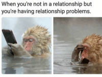 Not In A Relationship