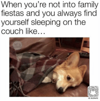 Memes, Couch, and 🤖: When you're not into family  fiestas and you always find  yourself sleeping on the  couch like  SC: BLSNAPZ Ughhhh 👉 @beinglatino👈 LatinasBeLike LatinaProblems LatinaProbs HispanicsBeLike LatinasareBeautiful LatinoPride BeingLatino BeLatino LatinosBeLike LatinoProblems LatinoProbs HispanicProblems